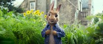 "Cinema familiar: ""Peter Rabbit"""